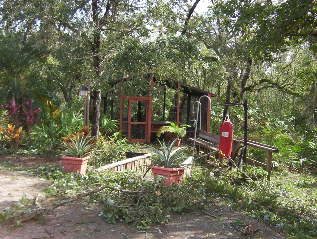 Hurricane Charlie damage 8-04 014
